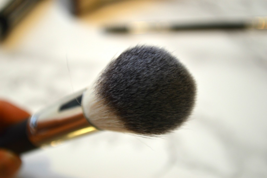 Crown Brush Powder Brush
