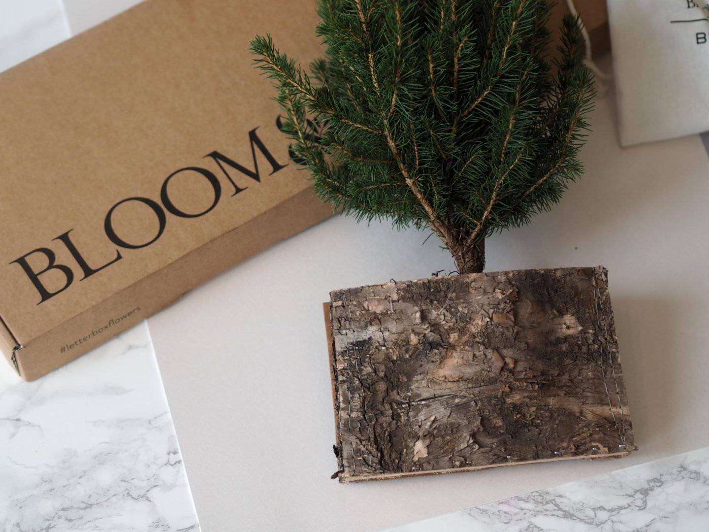 The Birch Tree: A Bloom & Wild x Birchbox Christmas