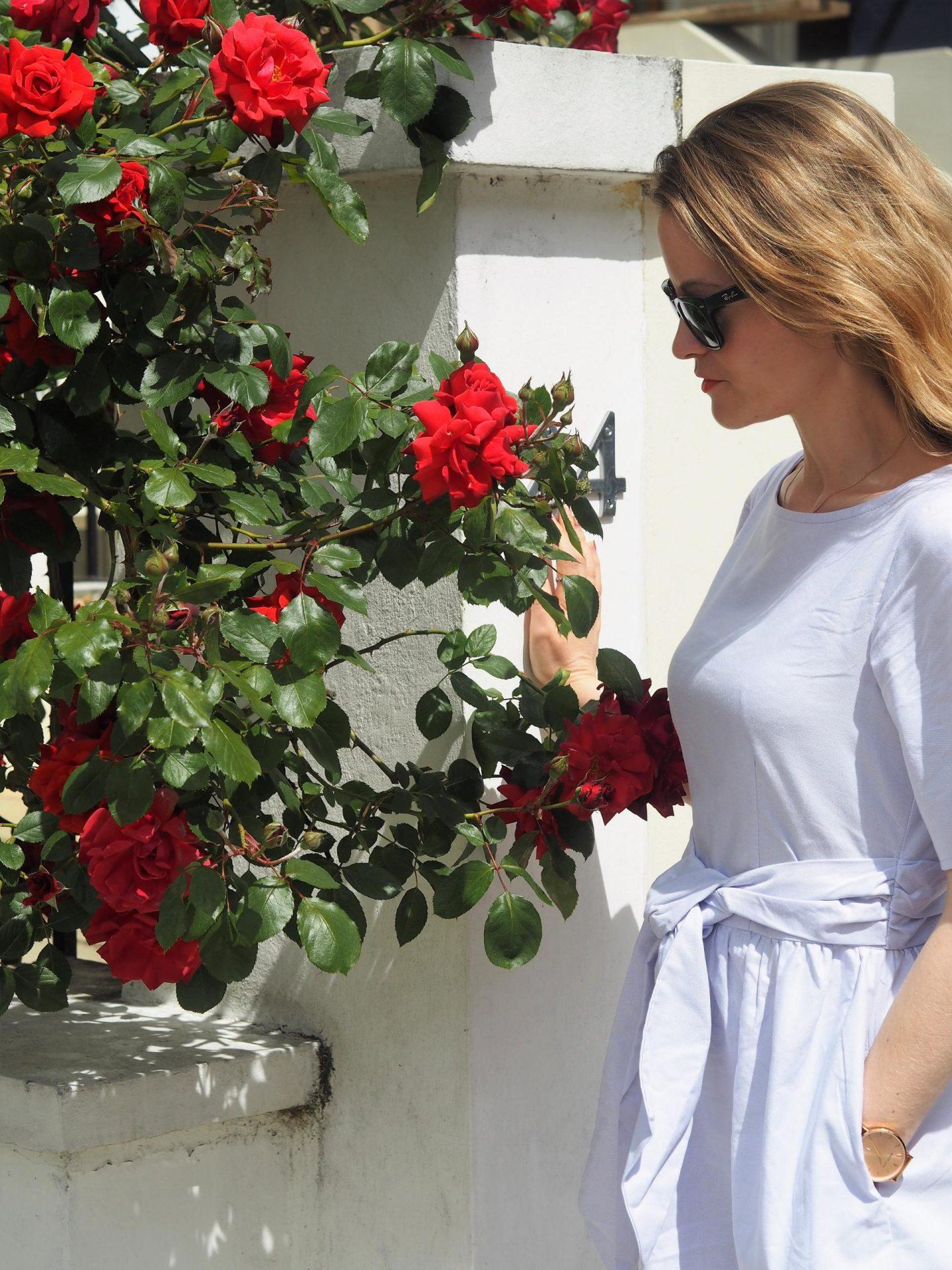 Closet London Lilac Wide Sleeve Tie Front Frill Hem Dress